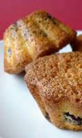 Petits gâteaux croustillants et moelleux aux pépites de chocolat