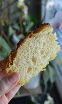 Focaccia sans pétrissage et à longue fermentation